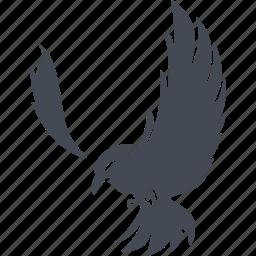 bird, birds, eagle, nature icon