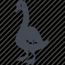 beak, birds, feathers, goose, nature icon