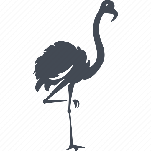 bird, birds, flamingo, nature icon