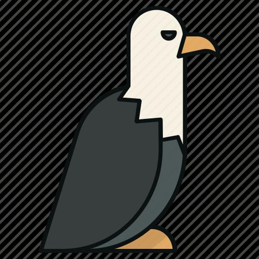 animals, bird, eagle, hunt icon