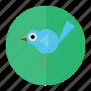 bluebird, bird, forest