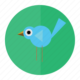 bird, bluebird, forest, twitter icon