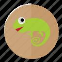 chamelon, forest, linux, lizard, reptile