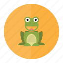 frog, forest, frogs, nature, toad, tropical