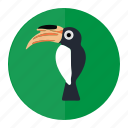 bird, forest, hornbill, wild icon
