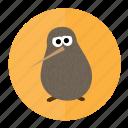 bird, kiwi, wild, zealand icon