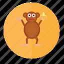 monkey, animal, animals, face, forest, wild