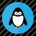 penguin, bird, penguins, snow