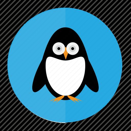 bird, penguin, penguins, snow icon