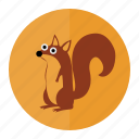 forest, nature, nuts, squirrel icon