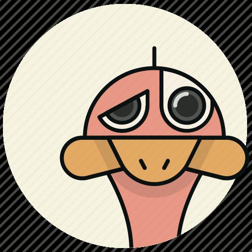 bird, nimal, ostrich icon