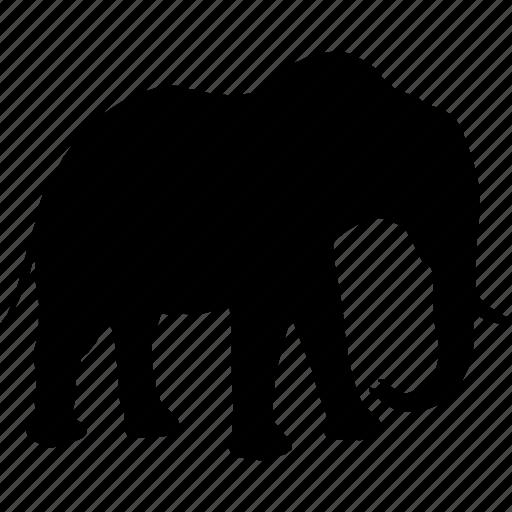 africa, animal, animals, dead, elephant, mammal, mamont icon