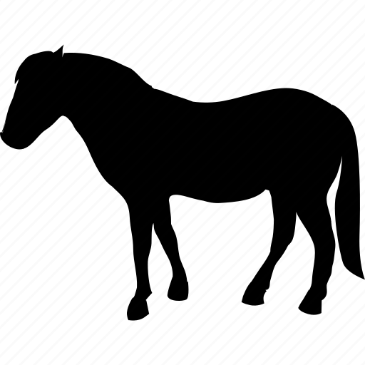 animal, domestic animals, gelding, horse, mare, pet, stallion icon