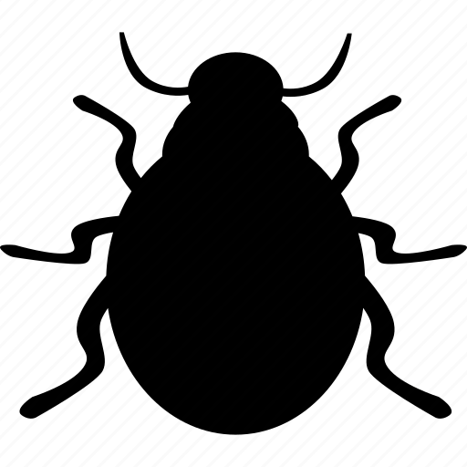 animal, bug, bugs, insect, ladybird, parasite, pest icon