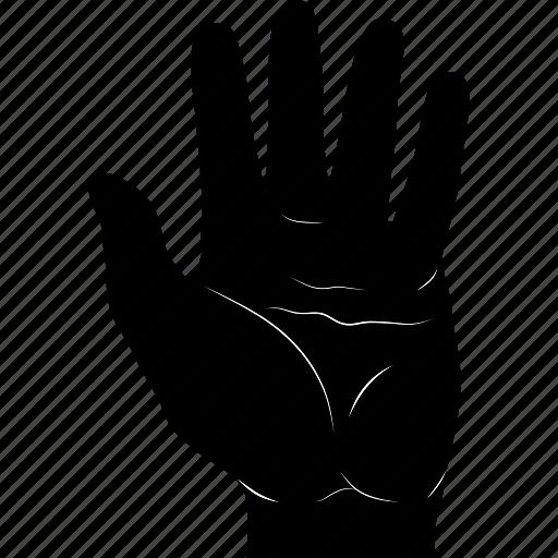 fingers, five, gestureworks icon