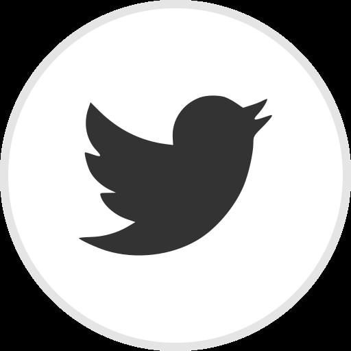 media, online, social, twitter icon