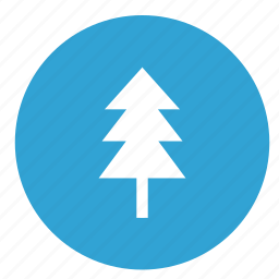 eco, ecology, fir, nature, tree icon