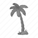 beach, eco, nature, palm, plant, summer, tree icon