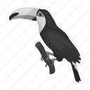 animal, bird, exotic, nature, toucan, tree icon
