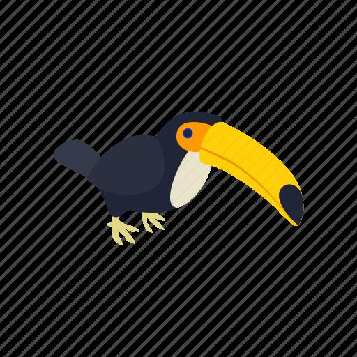 beak, brazil, exotic, isometric, toucan, tropical, wildlife icon