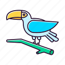 bird, blue, brazilian, exotic, jungle, toucan, wildlife