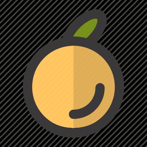 Breakfast, citrus, fresh, fruit, juice, juicy, orange icon - Download on Iconfinder
