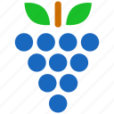 berry, grape, grapes, fruit, health, nature, wine icon
