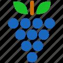 grape, berry, grapes, nature, fruit, health, wine