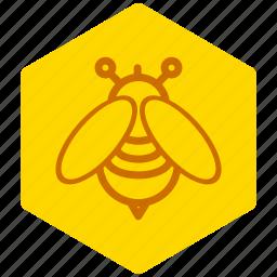 bee, candy, food, honey, natural, sugar, sweet icon