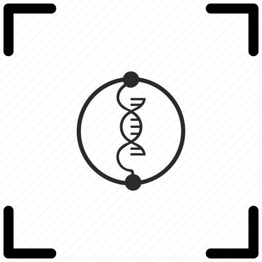 biometry, chain, data, dna icon