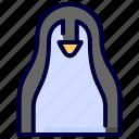 animal, bird, nature, penguin, pinguin, wild, winter icon