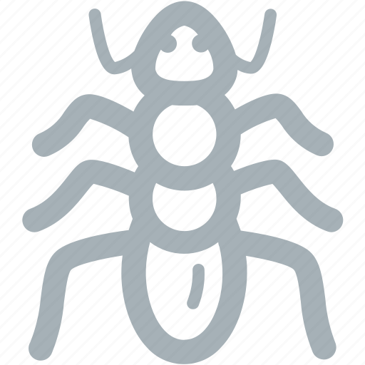 Ant, ants, bug, bugs icon - Download on Iconfinder