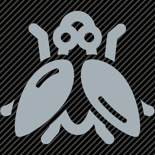 bug, bugs, flies, fly icon
