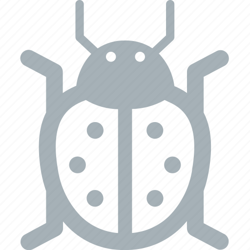 bug, bugs, ladybird icon