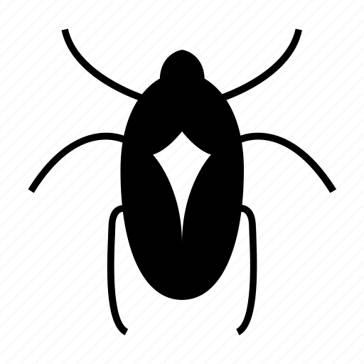 Bed bug, beetle, bug, bugs, insect, insecticide icon - Download on Iconfinder