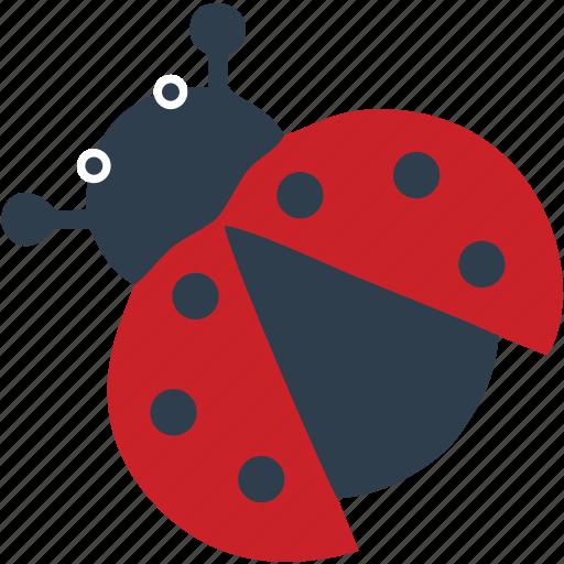 beetle, bug, bugs, fly, grass, plane icon