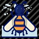 bee, bug, honey, insect, wildlife icon