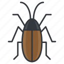 bug, cockroach, nature, vermin, wildlife icon