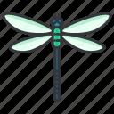 beauty, bug, dragonfly, nature, wildlife icon