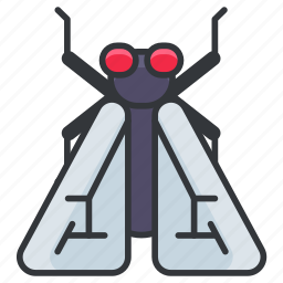 bug, fly, insect, nature, wildlife icon