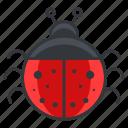 bug, cute, ladybug, nature, wildlife icon