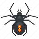 bug, halloween, nature, spider, wildlife icon