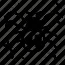 animal, arthropod, spider2, termite icon