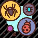 animal, arthropod, invasion, termite icon