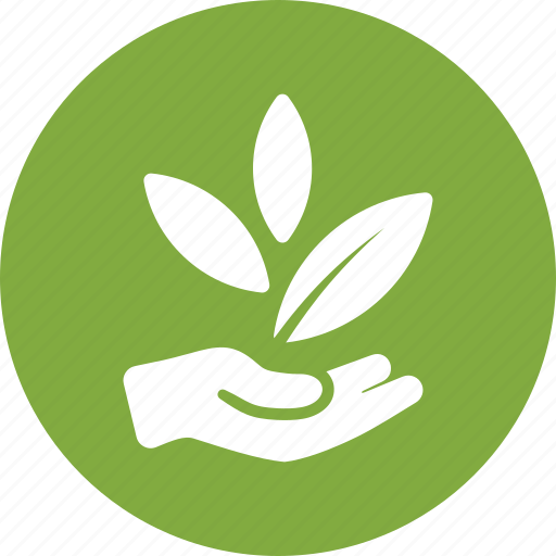 business startup, growth, hand, leaves icon