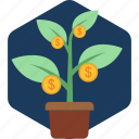 currency, growth, increase, money, plant
