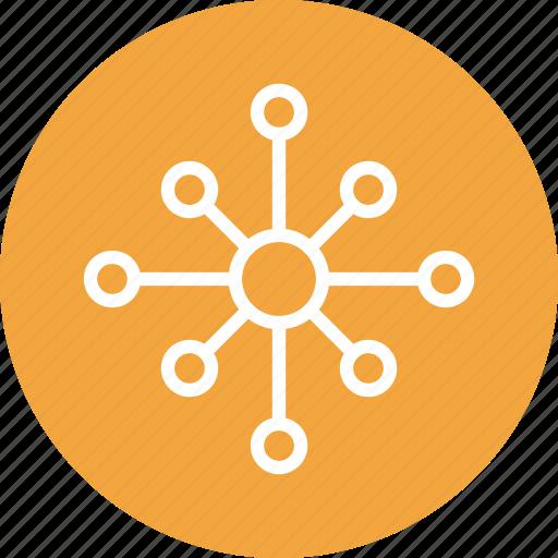 analytics, analyze, comparison, data icon