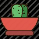 .svg, cactus, green, money, plant icon