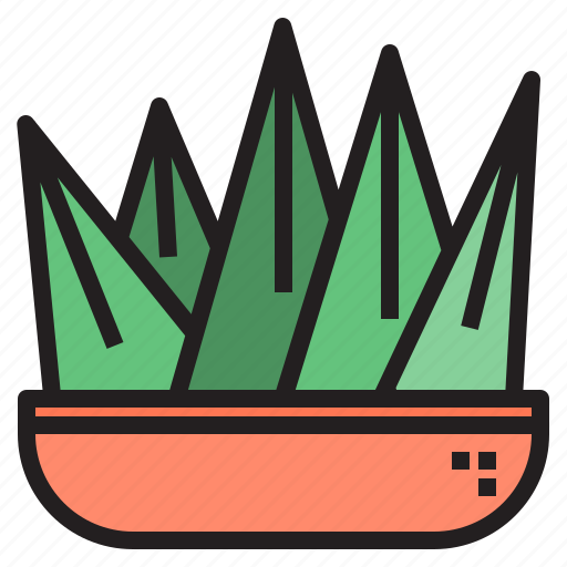 cacti, cactus, flower, plant, tree icon