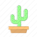 cactus, nature, pot icon